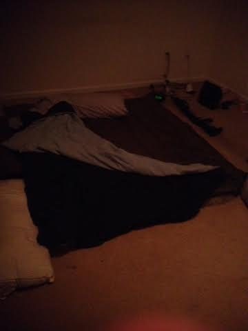 the bed. i decided to go more luxury and bought a $30 sleeping bag to put on top my pallet.