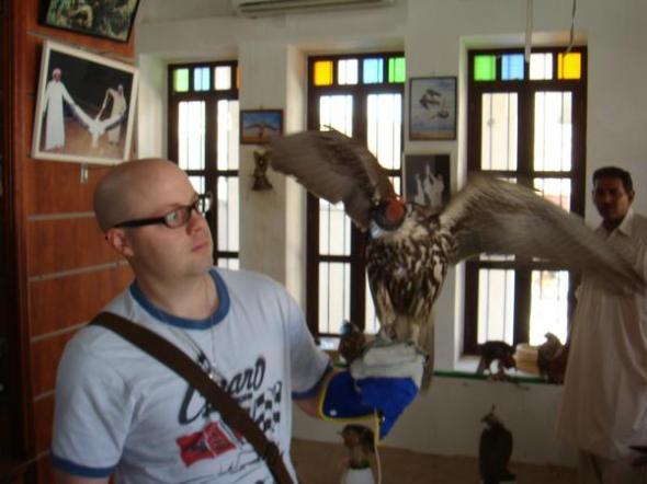 i farted, falcon bailed, pic taken. Qatar.